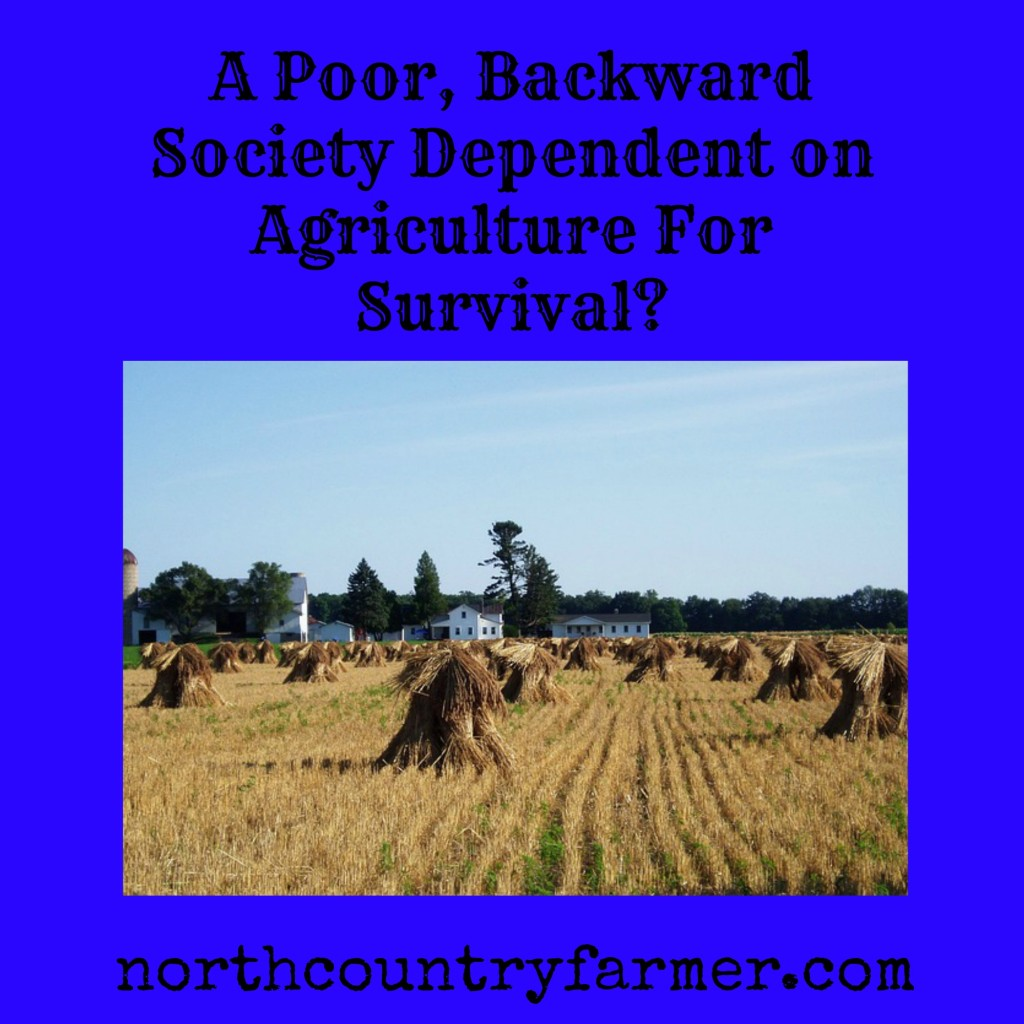 A Poor, Backward Society Dependent on Agriculture For Survival