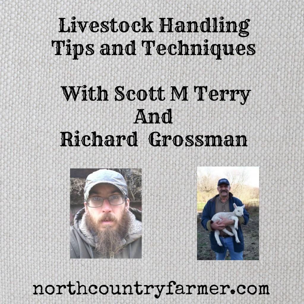 Livestock Handling (Podcast)