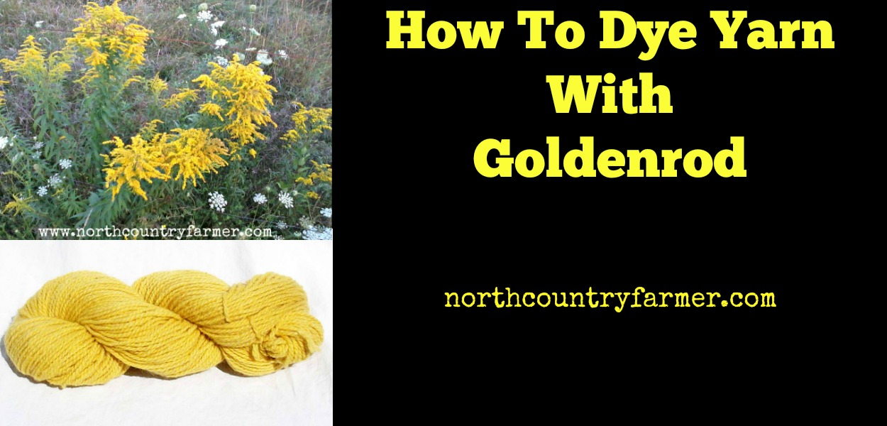 How To Dye Yarn With Goldenrod