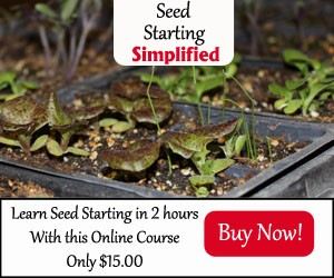 Seed Starting  Course