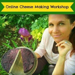 Online Cheese Course