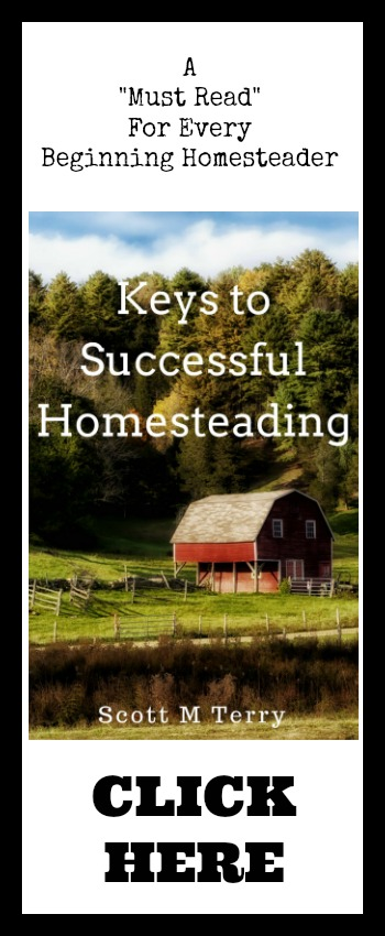 Keys To Successful Homesteading