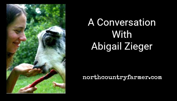 Conversation with Abigail Zieger