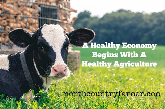 A Healthy Economy Begins With A Healthy Agriculture