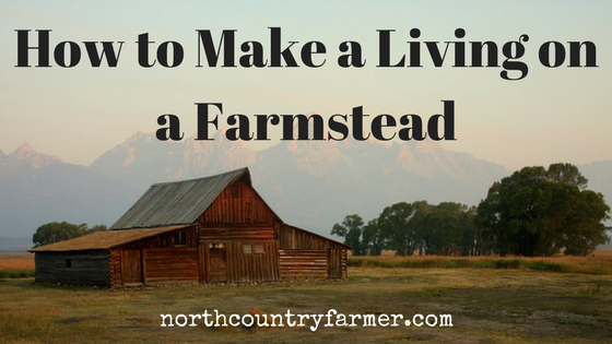 How to Make a Living on a Farmstead