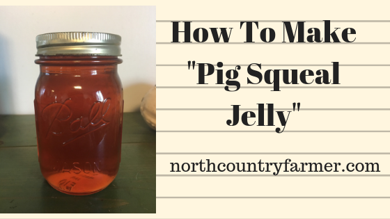 """Pig Squeal"" (Apple) Jelly"