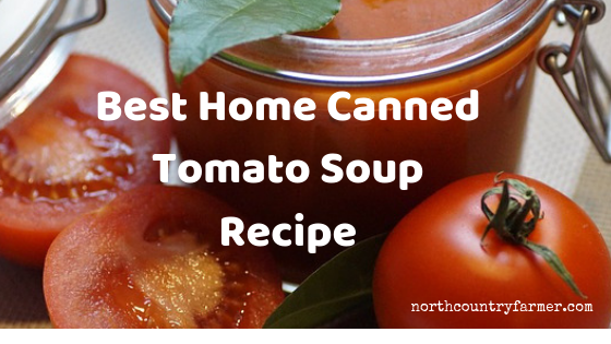 Best Home Canned Tomato Soup Recipe